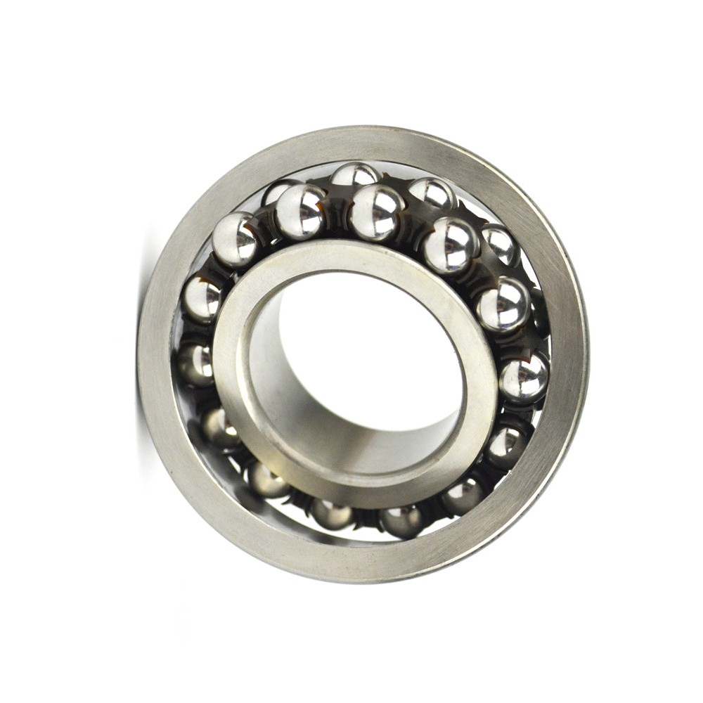 Competitive price roller bearings Needle roller bearings with inner rings
