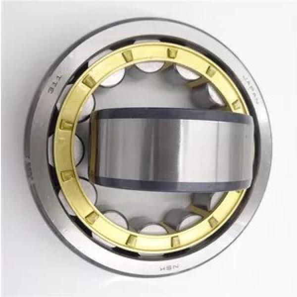 Refrigerator Bearing High Speed Bearing 6202 6202zz 6202 2RS 6203 6204 6205 6206 6207 6208 6209 6210 Stainless Steel Ball Bearing #1 image