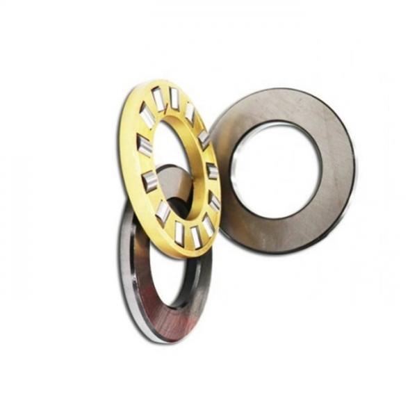Chrome Steel UCP Series Pillow Block Bearing/Insert Bearing/Bearing/Chumaceras/Pedestal Bearing/Setting Block (UCP206 UCP206-18 206-19 206-20) #1 image